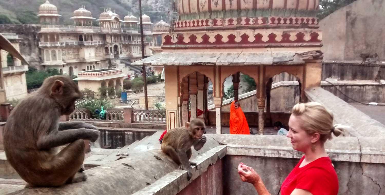 Ride to Galta Ji – (The  Monkey Temple)