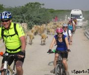 Jaipur-full-day-cycling-tour