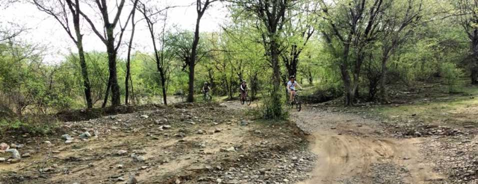 Wildlife Cycling in Rajasthan
