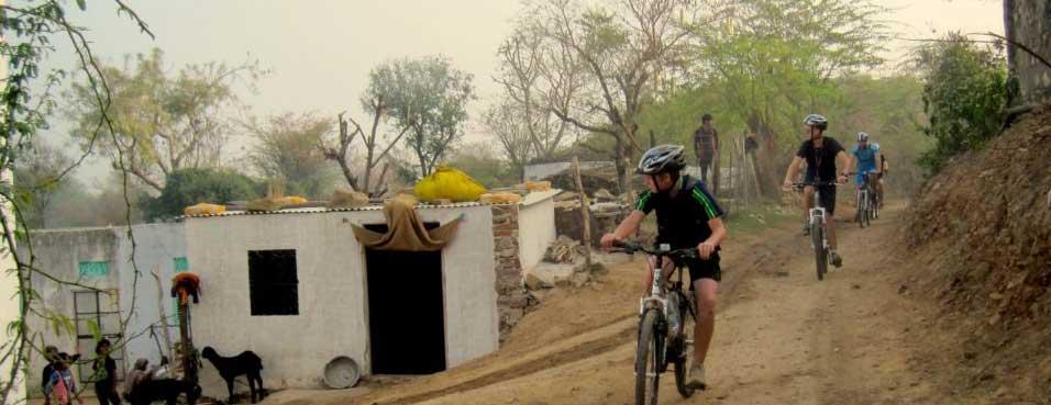 wildlife Cycle tour