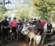 Countryside-bike-trip