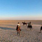 Desert-Horse-riding-Rajasthan