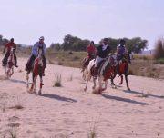 Horseback-tours-in-Rajasthan-INDIA