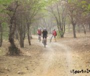 Places-to-visit-on-Sariska