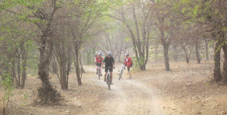 Jaipur Treasure Hunt For Students
