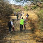 Things-to-do-in-Sariska