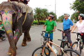 jaipur-cycle-tour-3