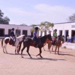 horse riding in jaipur