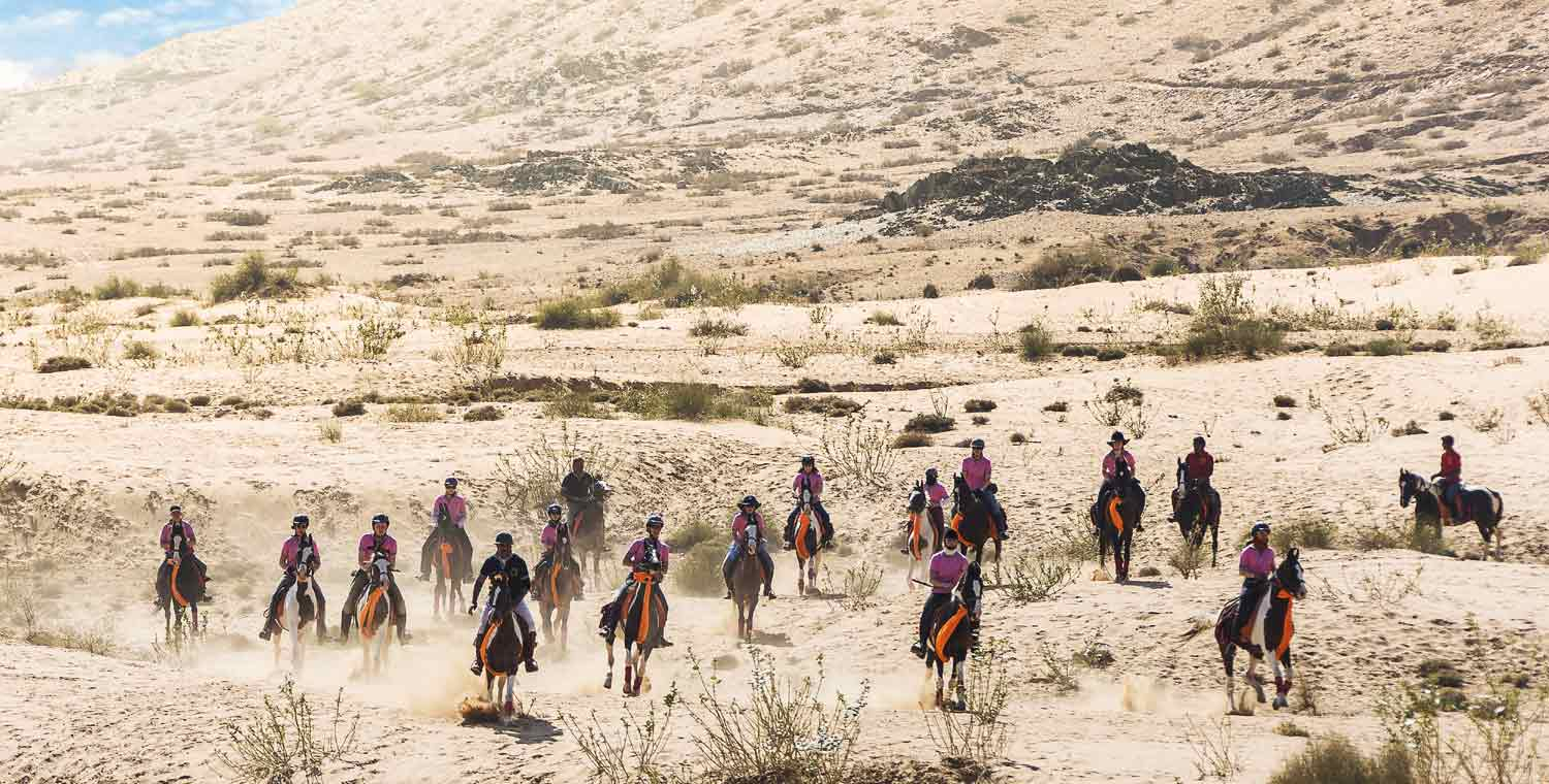 Horse Riding Holidays Tour in Rajasthan