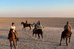Horse safari India