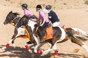 Horseback safari in Jaipur