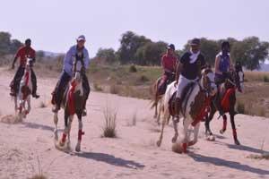 Jaipur Equestrian Horse Safari